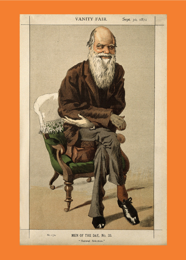 Ilustração caricatura Darwin