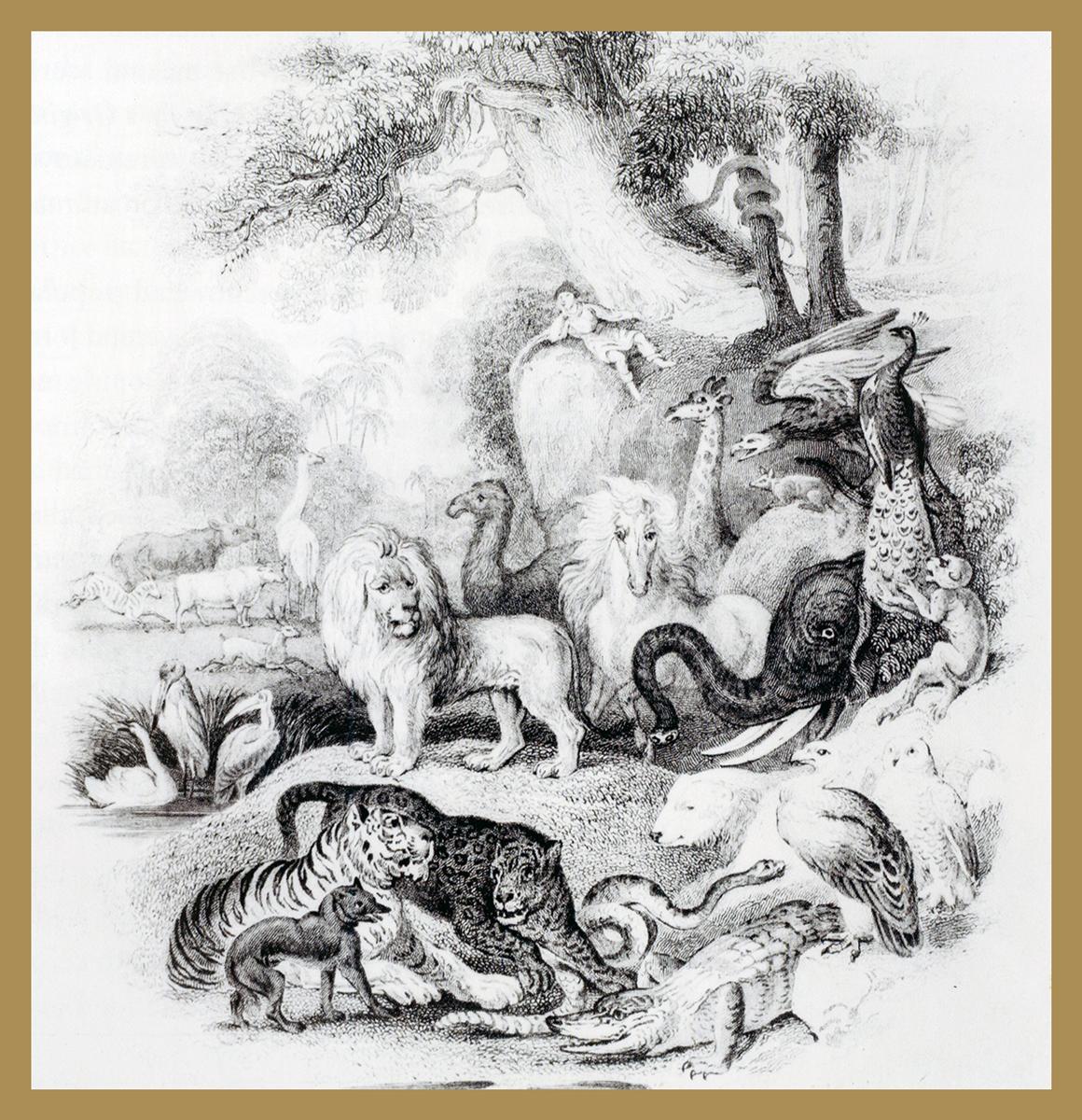 Ilustração da obra Eden