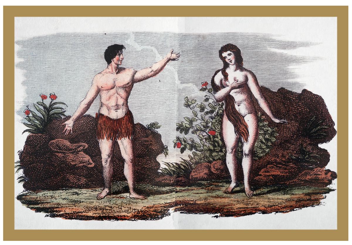 Ilustração de História Natural