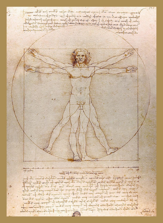 Desenho O homem vitruviano