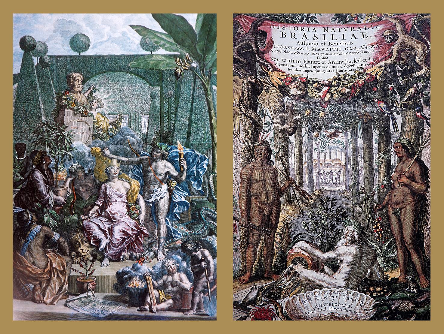 Ilustrações das obras Frontispício de Hortus Cliffortianus e Frontispício de Historia Naturalis Brasiliae